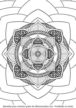 imprimir y colorear